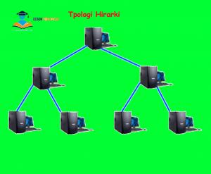topologi hirarki