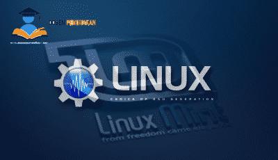Pengertian Sistem Operasi Linux Menurut Para Ahli Lengkap