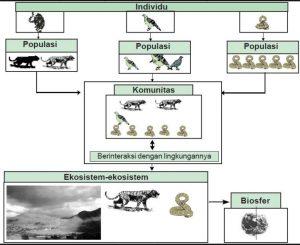 Satuan Makhluk Hidup dalam Ekosistem