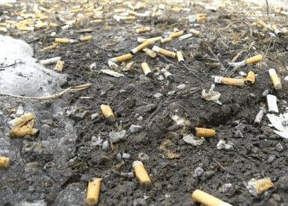 Pengertian, Penyebab, Dampak Negatif, Dan Penyebab Pencemaran Tanah
