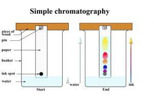 Pengertian-Sublimasi-Dan-Kromatografi-Lengkap-Dengan-Macam-Jenisnya