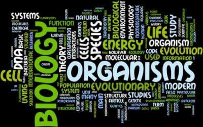 cabang-cabang-biologi
