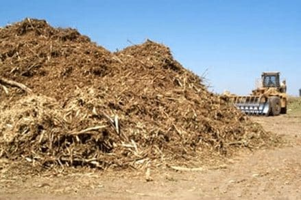 Pengertian Energi Biomassa