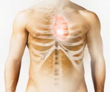 Cara Jantung Memompa Darah