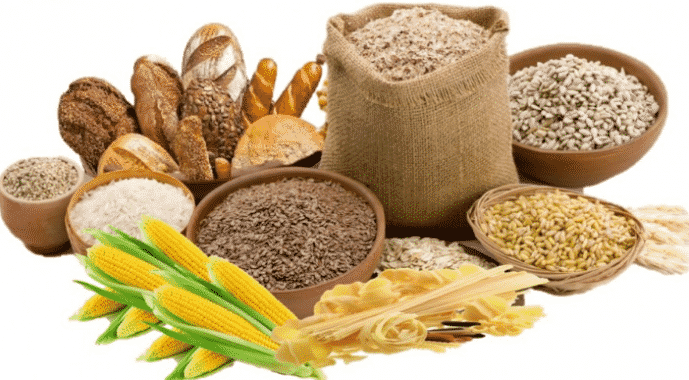 Penjelasan Peranan Struktural Karbohidrat Secara Lengkap