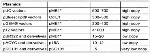 Copy number plasmid