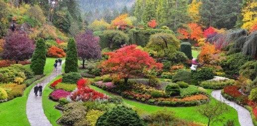 Kebun Botani