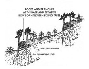 Membangun teras hijauan