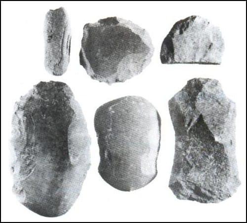 Pebble atau Kapak Sumatera