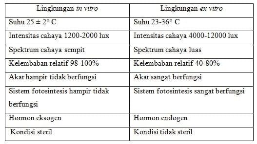 Perubahan Lingkungan in vitro ke lingkungan ex vitro