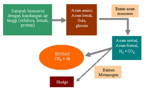 Skema Pembentkan Gas Bio