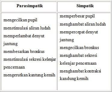 Tabel Fungsi Saraf Otonom