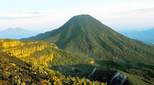 Taman Nasional Gunung Gede