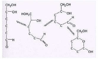 Cincin glukopiranosa
