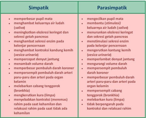 Perbedaan Fungsi