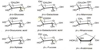 Berbagai jenis molekul gula