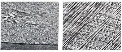 Dinding-sel-primer