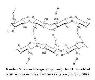 Ikatan-hidrogen