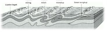 Lipatan-endogen