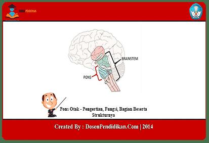Pons-Otak