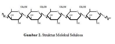 Struktur-Molekul-Selulosa