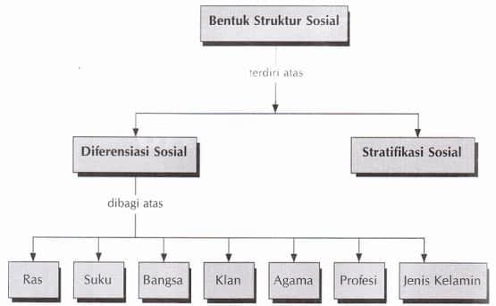 Struktur Sosial Adalah