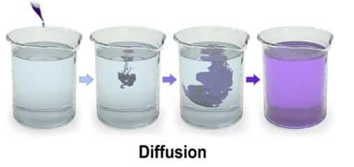 Contoh difusi