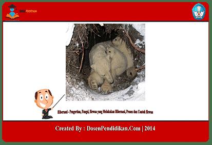 74+ Gambar Hewan Dan Tahap Pertumbuhannya Keterangan Brainly Gratis