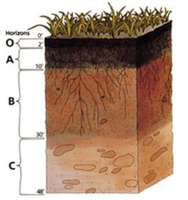 Siklus Tanah