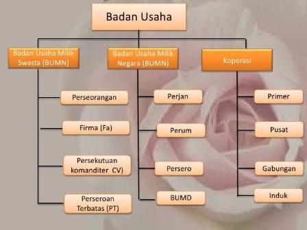 Struktur Badan Usaha Milik Negara