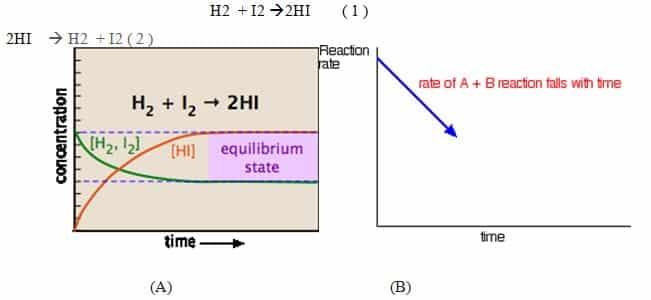 Proses Terjadinya Reaksi Kesetimbangan (A-B)