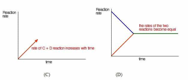 Proses Terjadinya Reaksi Kesetimbangan (C-D)
