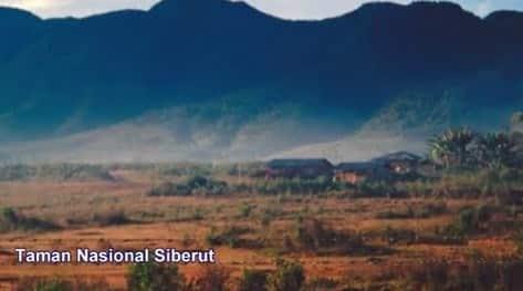 Cagar-Alam-Siberut