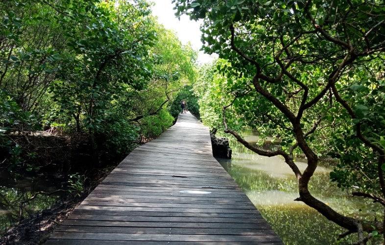 taman hutan raya di Bali dan Nusa Tenggara
