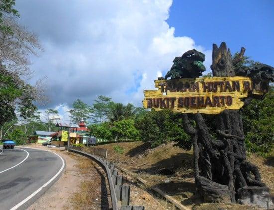 taman hutan raya di Kalimantan