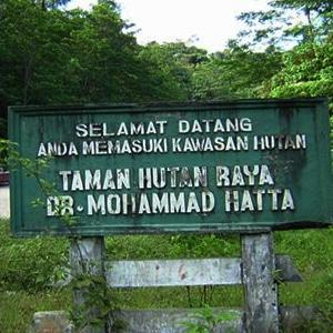 taman hutan raya di sumatera