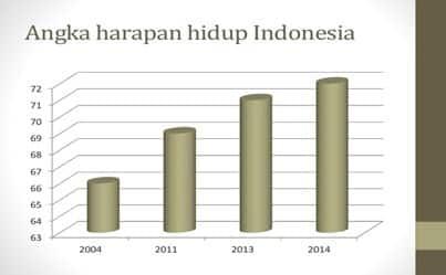 Angka Harapan Hidup Di Indonesia