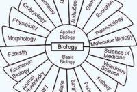 Cabang-Ilmu-Biologi