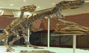 Dinosaurus-Cretaceous-dari-Mongolia