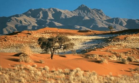 Gurun-di-Afrika