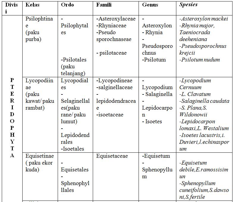 Klasifikasi-Pteridophyta