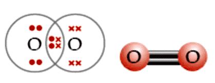 Ikatan-kovalen-rangkap-dua-pada-molekul-O2