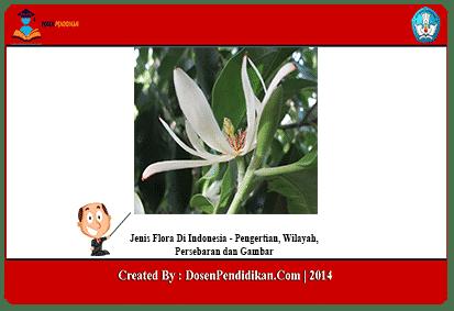 Jenis-Flora-Di-Indonesia