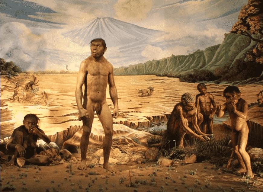 Manusia-Purba-Di-Indonesia