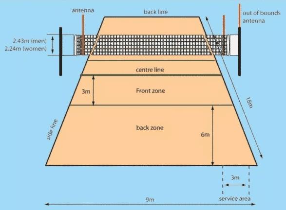Pengertian Tenis Meja Peraturan Teknik Lapangan Tinggi Net