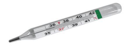 Termometer-Klinis