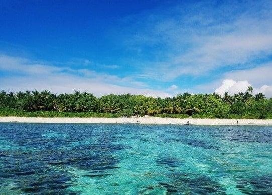 Ekosistem-Pantai