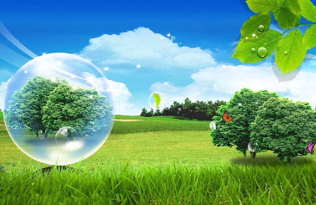 Pengertian-Lingkungan-Hidup