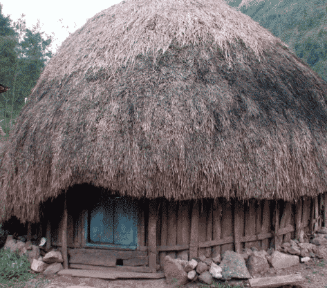 Rumah-honai