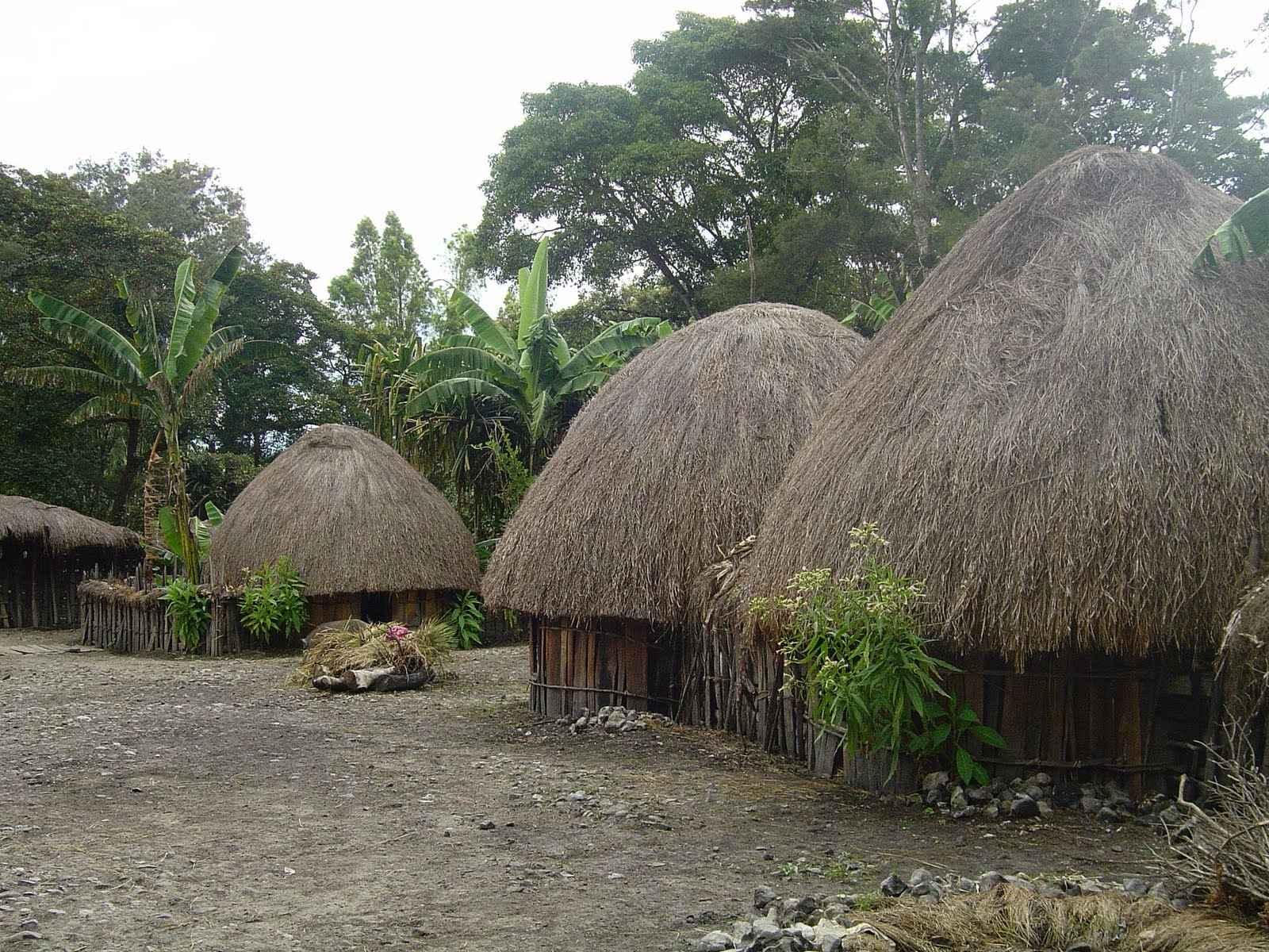 Rumah-Adat-Wamai